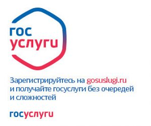 gos_uslugi_banner